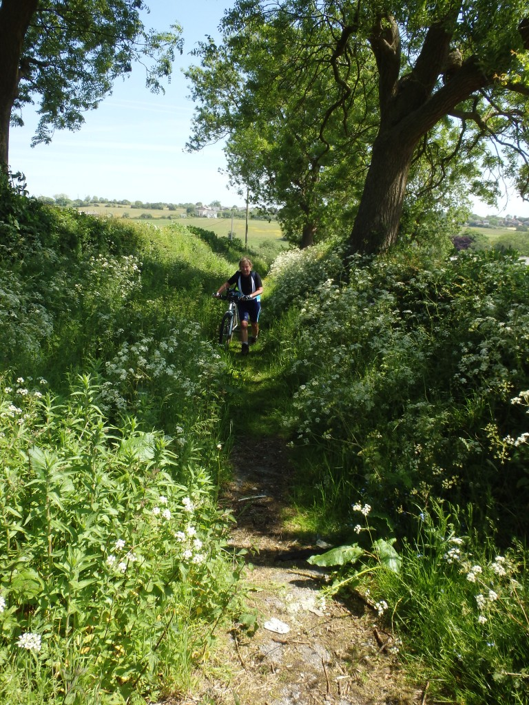 Susan crashing through the undergrowth.... No road here either